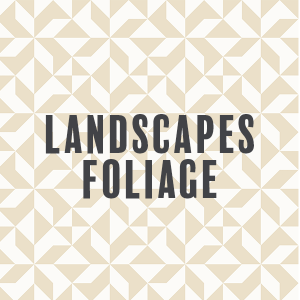 Landscapes - Foliage