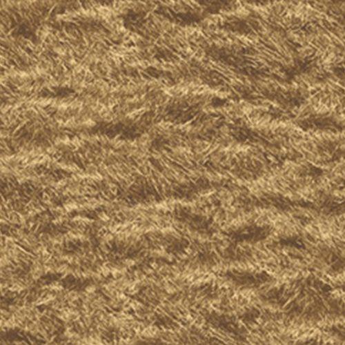 Golden Brown Grass